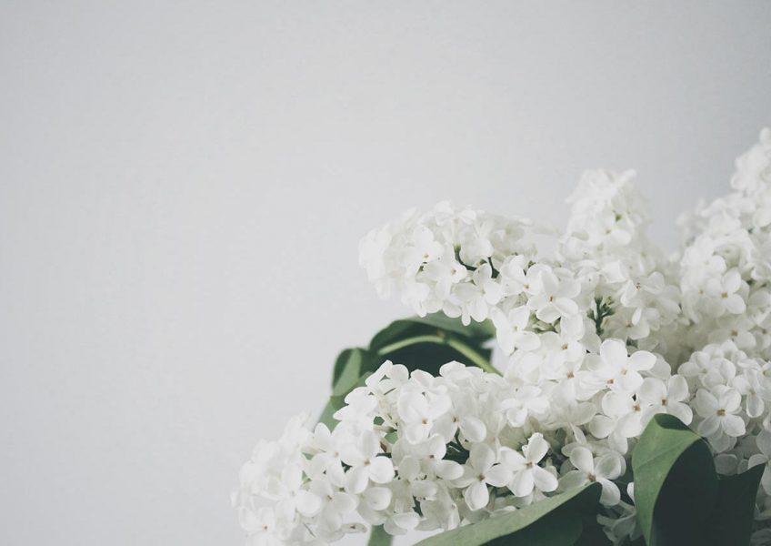 blog-post-15-m