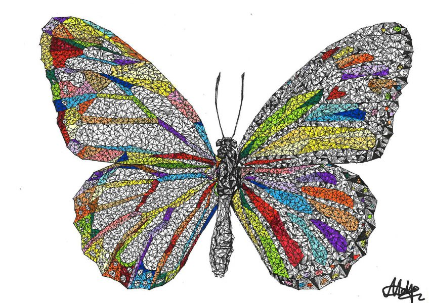 asare-adjei_earth-is-home_butterfly_001_final